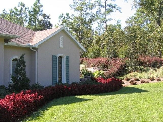 landscape design in homosassa florida landscaping ideas company
