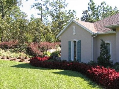 Residential Landscape Ideas