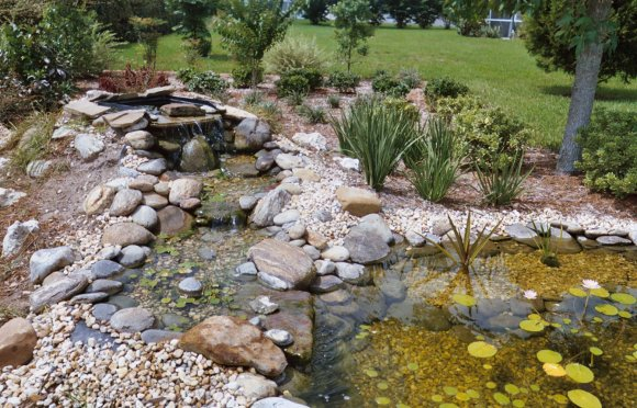 Established in 1991, Florida First Landscape & Design is a landscaping  company offering design and installation of water gardens and waterfalls,  ... - Homosassa Landscaping Design Center, Water Gardens, Pavers